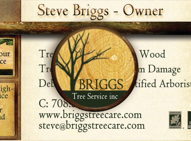 Briggs Tree Setvice